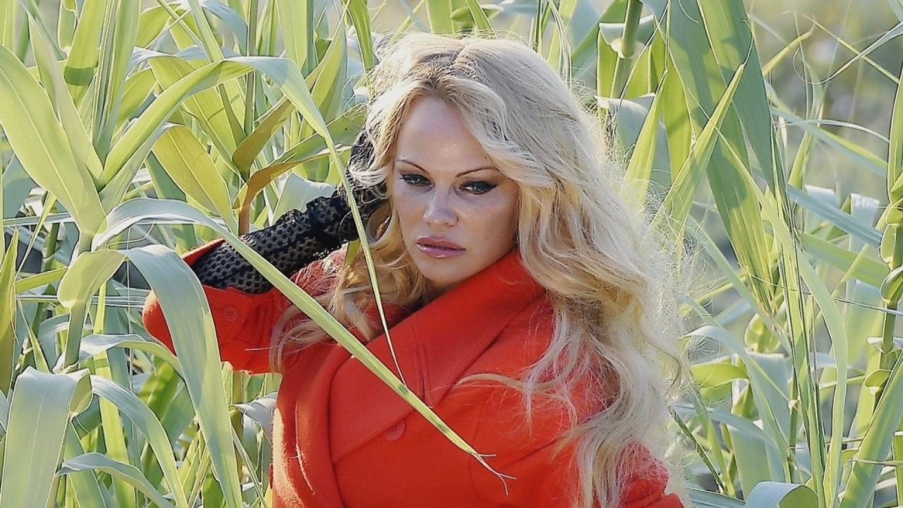 Pamela Anderson Ditches Her Underwear for Racy Photo Shoot in Saint ...