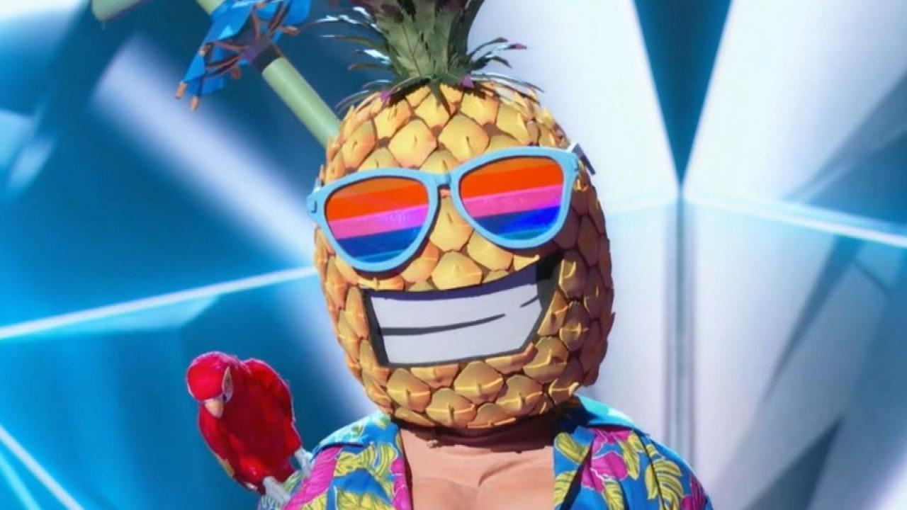 5c13fb38ff7bf6  The Masked Singer  Reveals Another Secret Celebrity Identity -- Find Out  Who Got Unmasked!