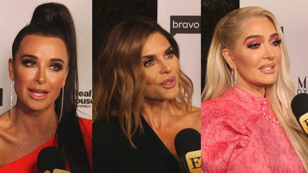 11456514134211 'RHOBH' Cast Promises Season 9 Is About More Than Just Dorit, a Dog and a  Blog (Exclusive)